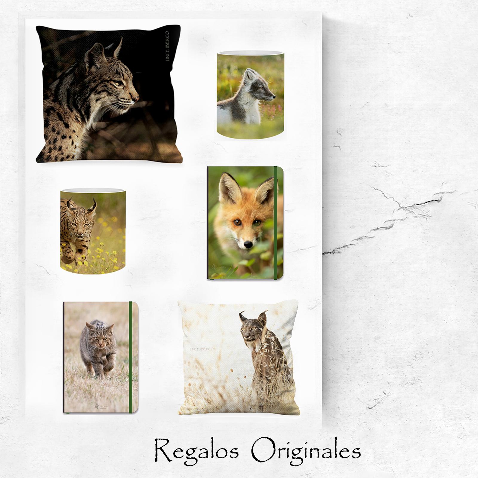 Tienda Regalos Originales