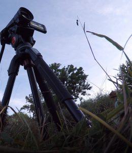 videos de naturaleza